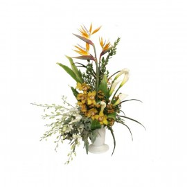 Arrangement Douceur tropical
